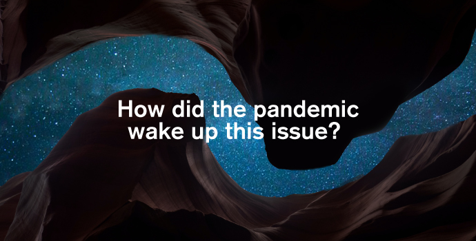 how did the pandemic wake up this issue?